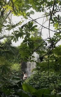 The Eden Project / Autor: www.edenproject.com